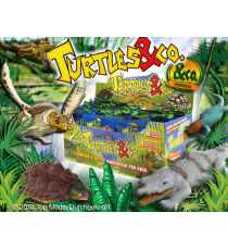 Turtles & Co. Display 20 sobres.
