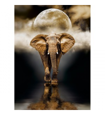 Clementoni 39416. Elephant design. Puzzle 1000 pieces